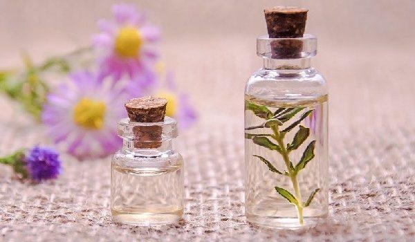 bisnis parfum refill